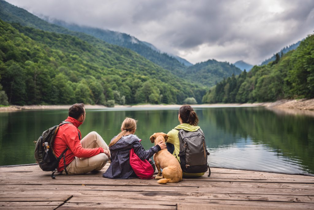 RV with dogs Family with a small yellow dog resting on a pier and looking at lake and foggy mountains