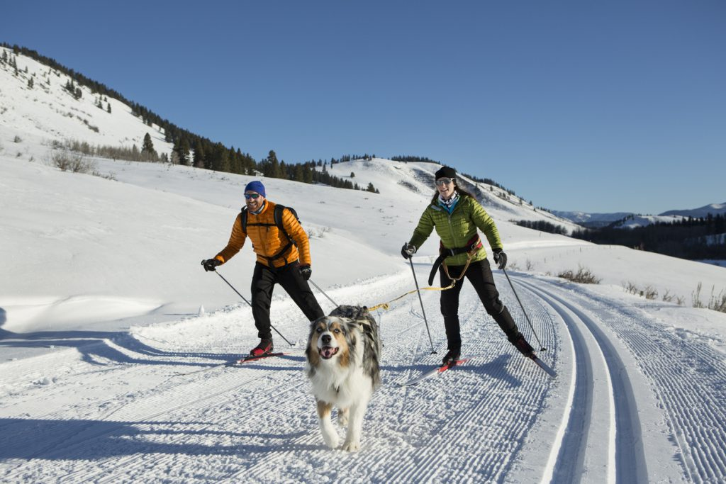 Great Lakes campgrounds - A couple and there dog skijoring in the western United States.